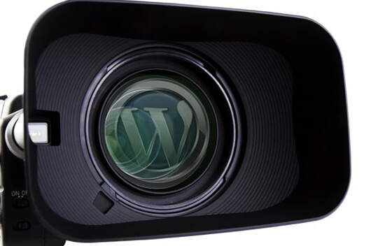 WordPress Video Guide