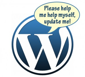 Sådan opdaterer du wordpress plugins