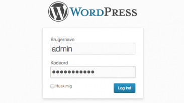 WordPress Administration